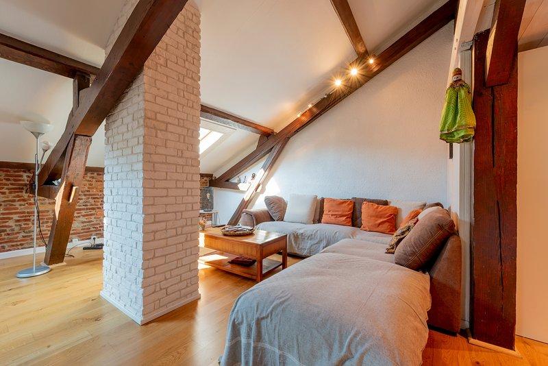 Le Toulousain - Appartement climatisé en centre ville, holiday rental in Quint-Fonsegrives