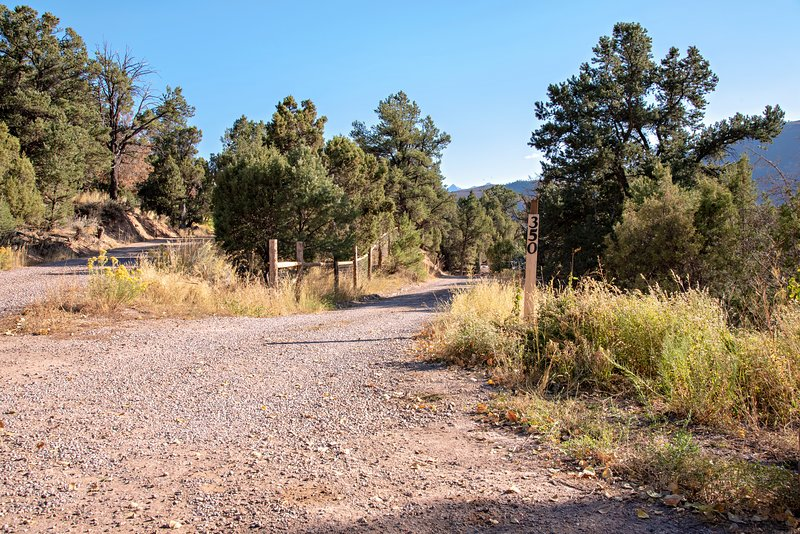 Driveway  to tiny home