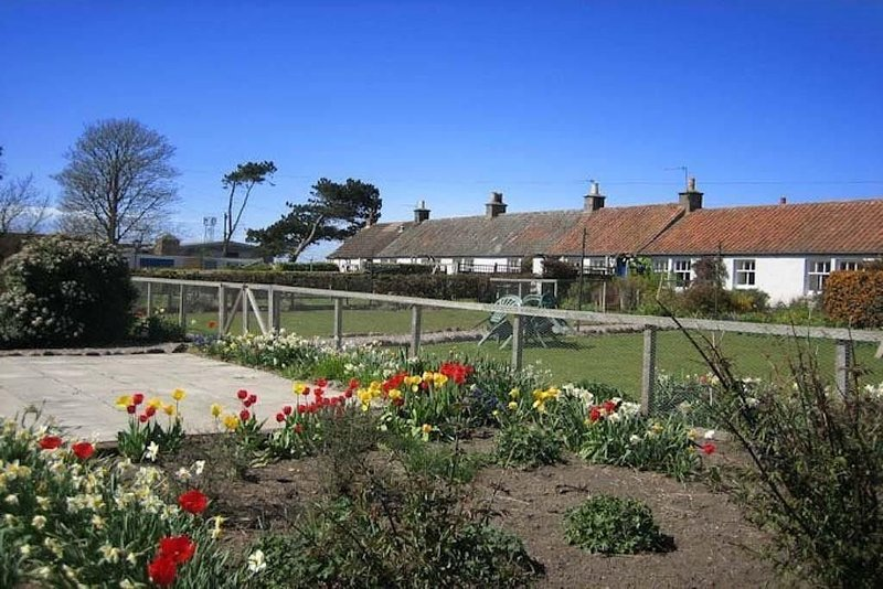 The Nuttings Cottage, holiday rental in Crail