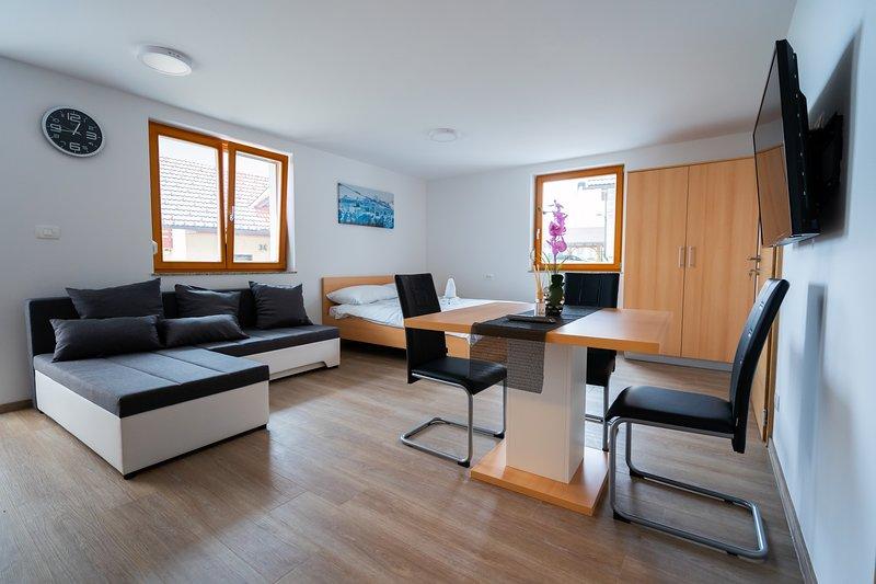 PJagodic apartments & wellness, holiday rental in Senturska Gora