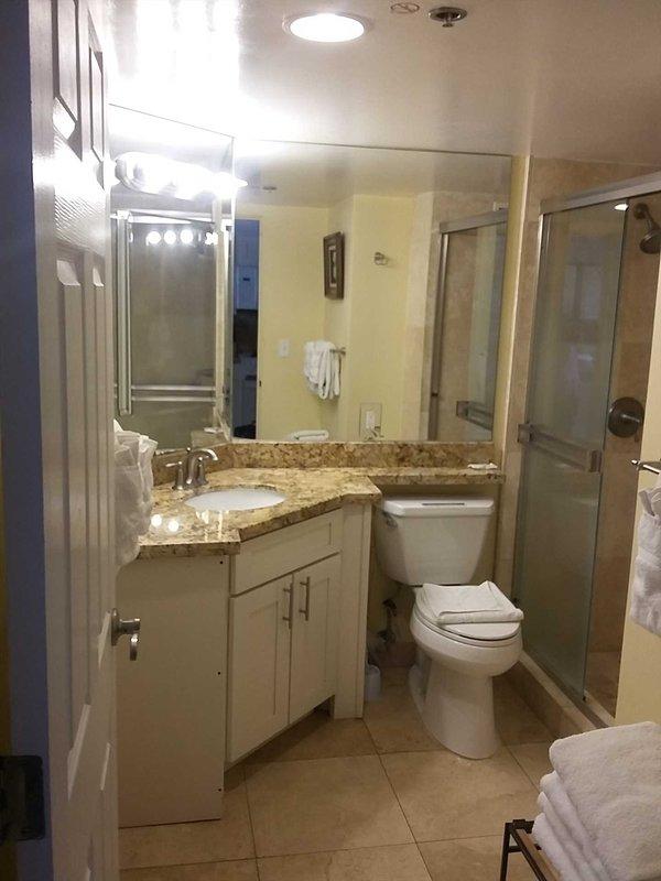 Indoors,Room,Toilet,Bathroom,Double Sink