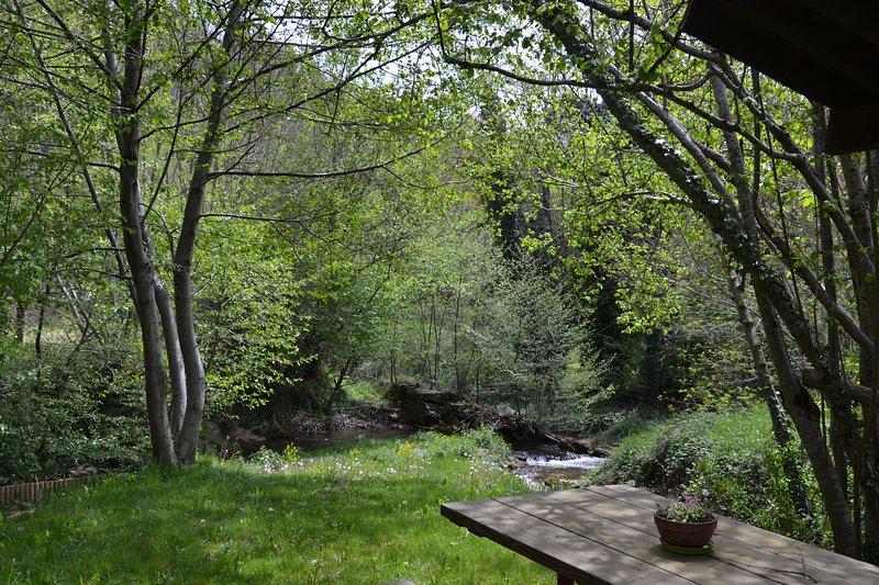 Petit coin de paradis privatisé au fond du jardin bordé par deux rivières