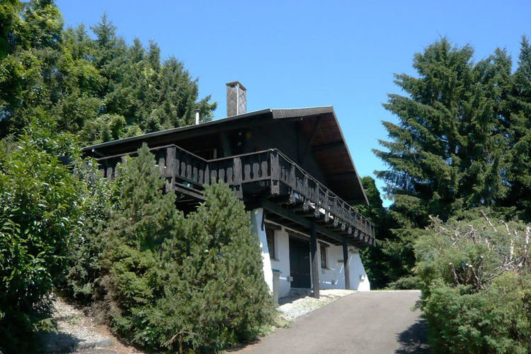 Cosy holiday home with fireplace and infrared sauna, in the middle of nature, holiday rental in Barvaux