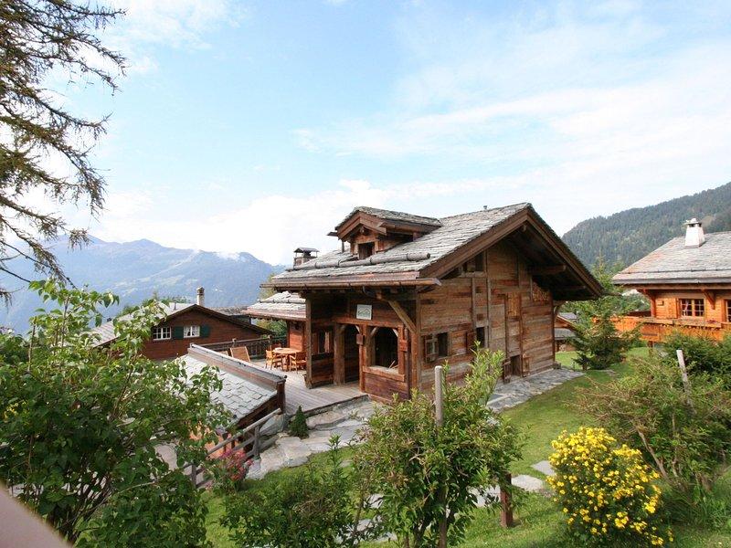 Comfortable and luxurious chalet with view on the Mont Blanc., alquiler vacacional en Verbier