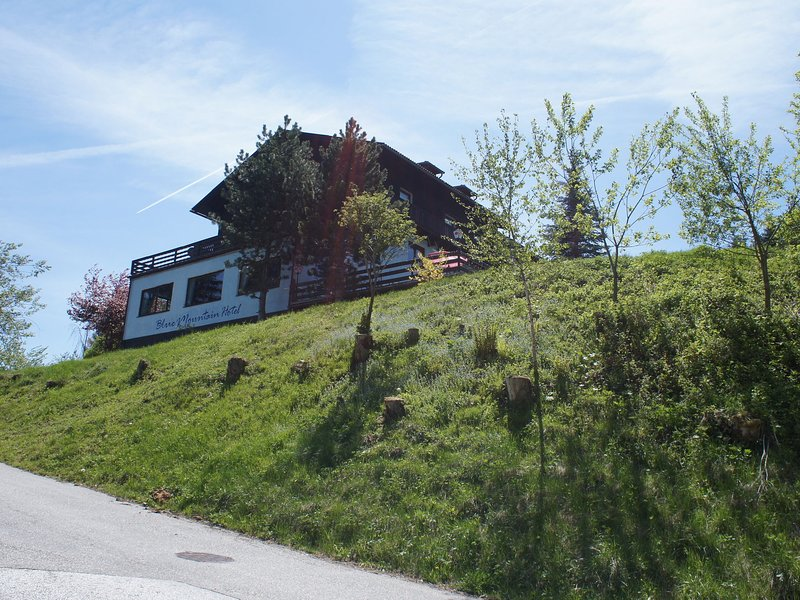 Spacious Apartment with Sauna in Afritz am See Carinthia, holiday rental in Afritz