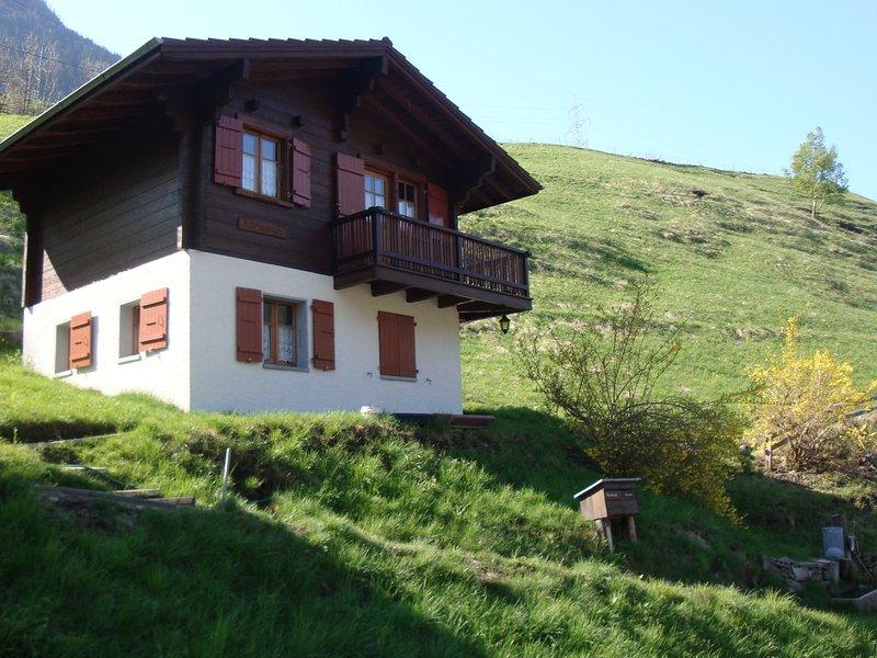 Cozy Chalet in Chrixacher near Forest, location de vacances à Rosswald