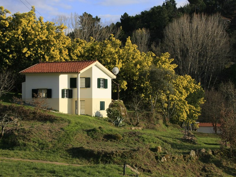 Detached holiday home with delightful view over the valley, location de vacances à Santa Comba Dao
