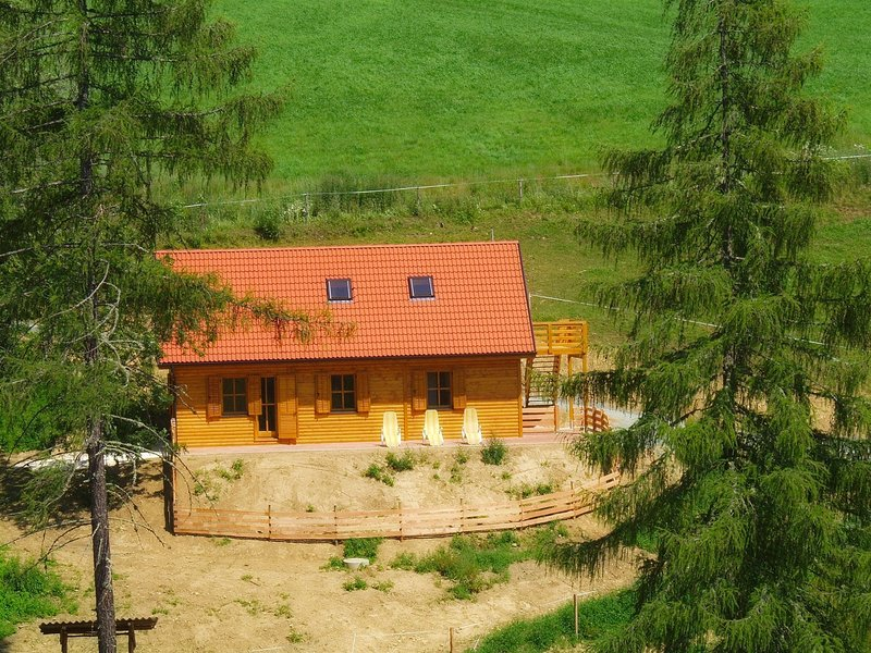 Comfortable Chalet in Liebenfels near Ski Area, casa vacanza a Agsdorf