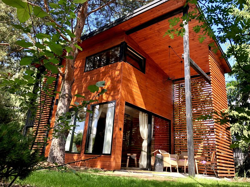 A modern house in a beautiful location on the edge of the forest., casa vacanza a Dlugosiodlo
