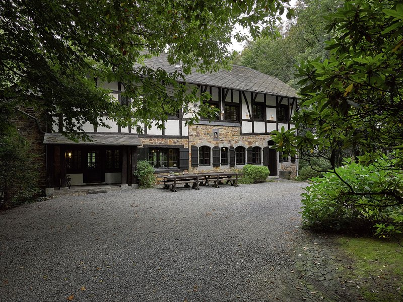 Stunning Ardennes castle villa with fireplace situated in a wooded area, holiday rental in Sart-lez-Spa