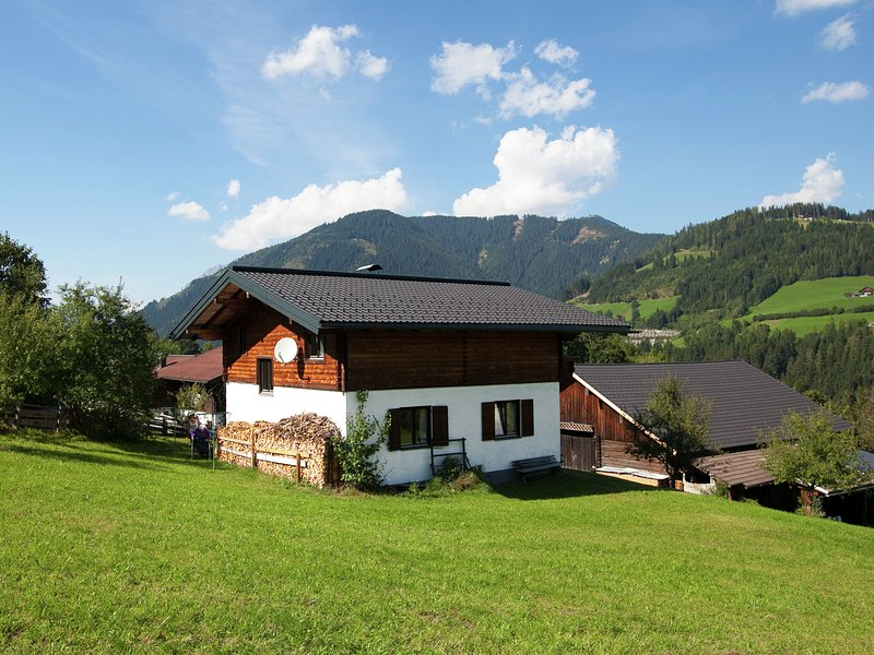 Lush Holiday Home in Hüttau near Ski Area, holiday rental in Pfarrwerfen