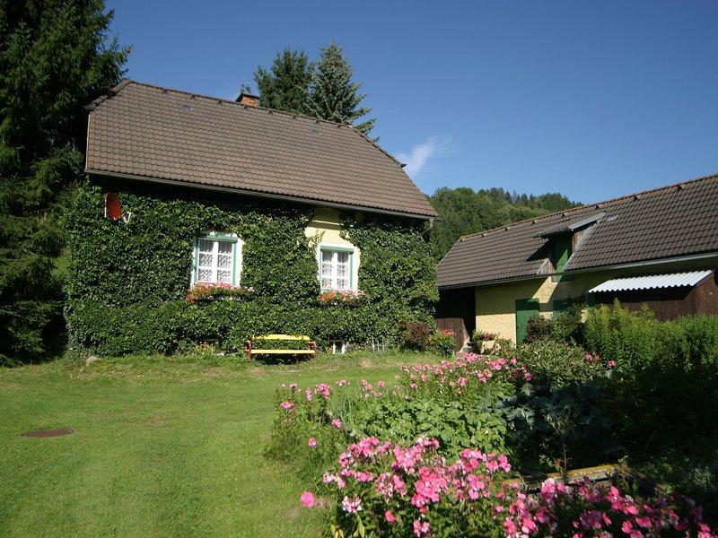 Modern Chalet near Ski Area in Scheifling, holiday rental in Moederbrugg