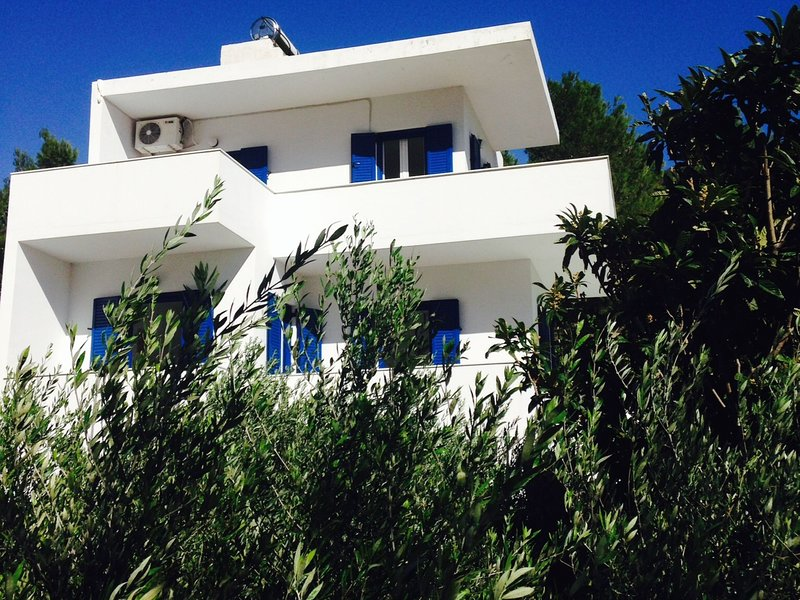 Maisonette in villa in beautiful Agia Fotia Bay, SE coast Crete, near the sea, vacation rental in Ferma
