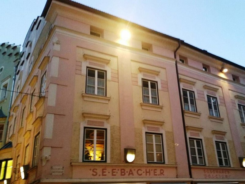 Charming renewed apartment, pet allowed, in the city center of Brixen, location de vacances à Maranza