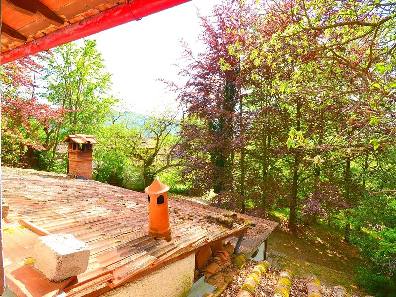 Spacious Holiday Home in Migliorini with Pool, holiday rental in Limestre