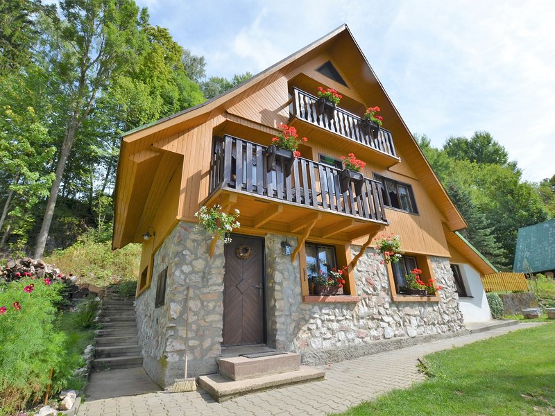 Luxury Chalet near Ski area in Benecko, holiday rental in Vrchlabi