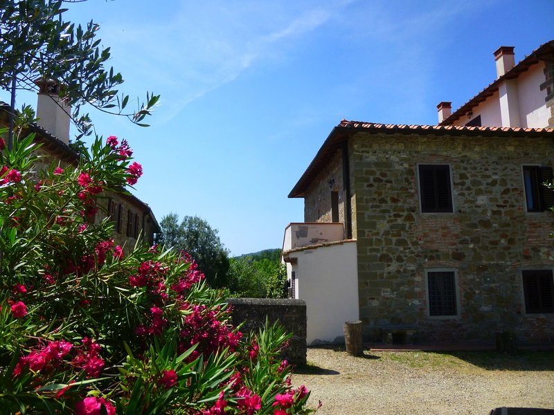 Luxurious Holiday Home in Pelago Italy with Pool, location de vacances à Lagaccioni