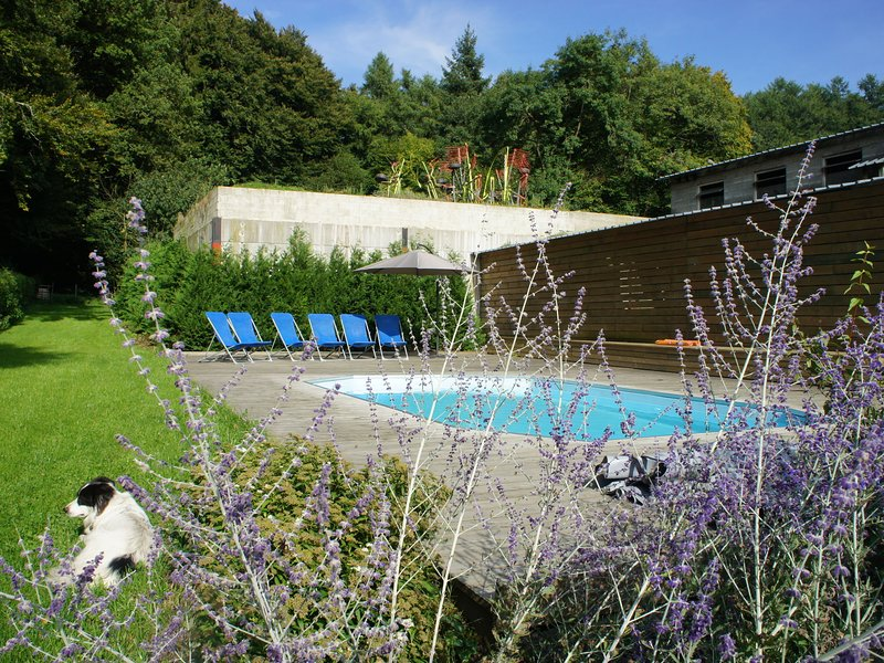 Gite for family groups with outdoor pool near Neufchateau, vacation rental in Chiny
