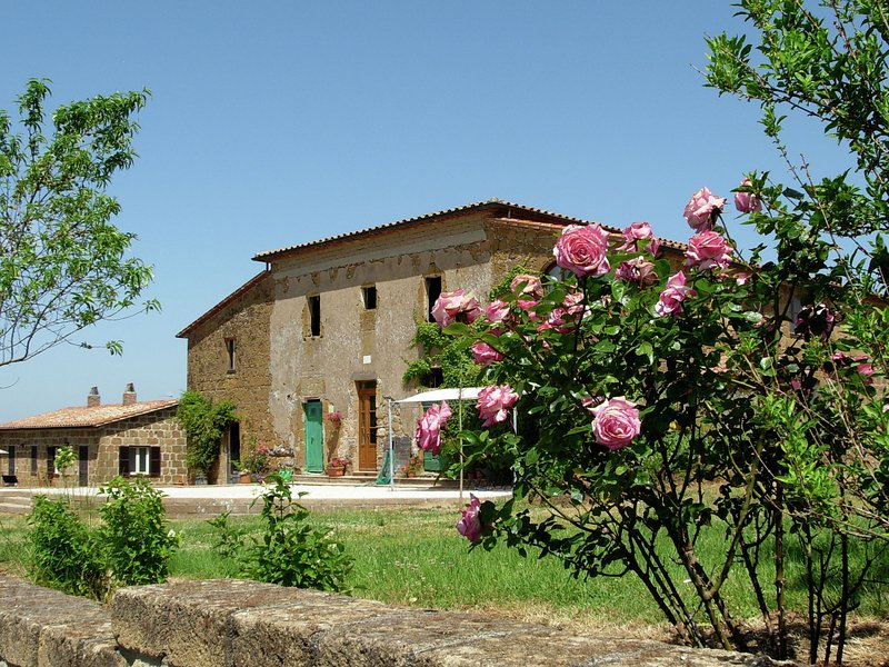 Scenic Farmhouse with Swimming Pool by Forest in Sorano, vacation rental in Elmo