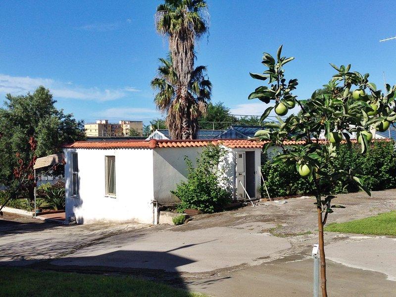 Modern Apartment in Trecase with garden, vacation rental in Trecase