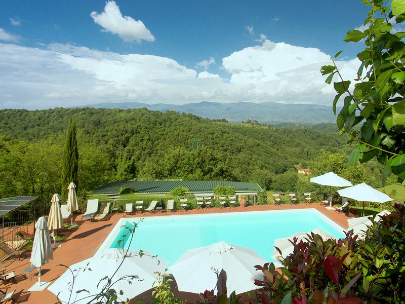 Attractive apartment in typical Tuscan style., holiday rental in La Fornace