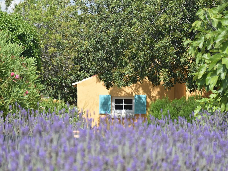 Renovated, attractive Portuguese farm with comfortable and modern decoration, holiday rental in Salir