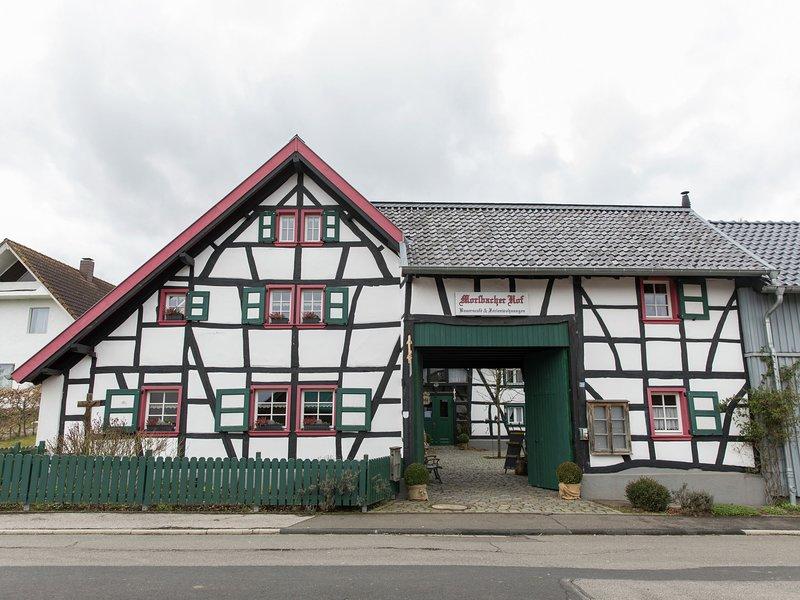Vintage Apartment in Morsbach with a Terrace, location de vacances à Schleiden