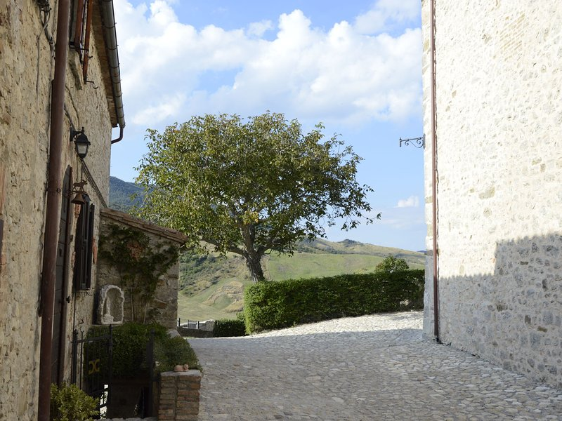 Charming apartment in a medieval village with beautiful garden and wifi, vacation rental in Sarsina