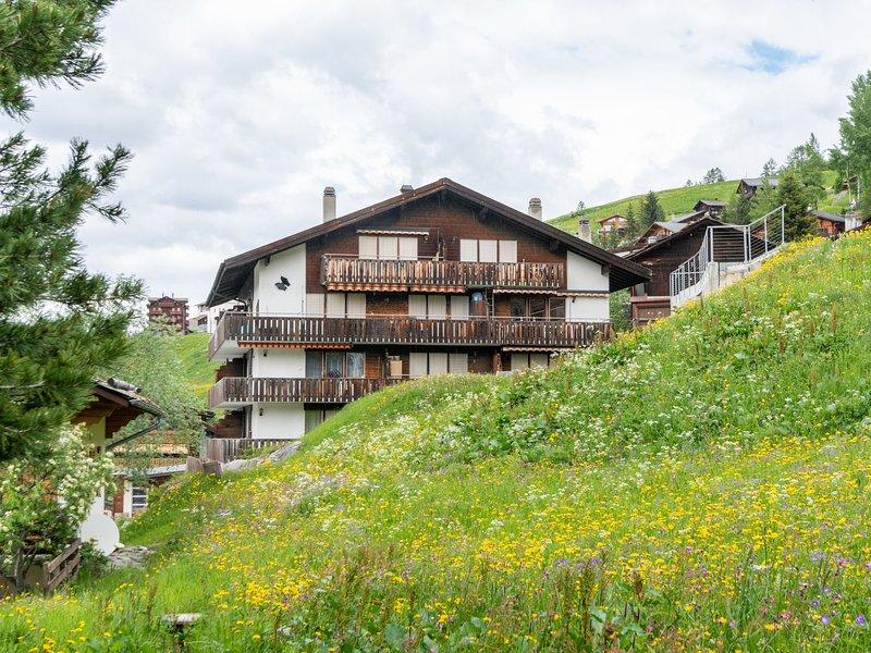 Spacious Holiday Home in Grächen with Open Kitchen, location de vacances à Eischoll