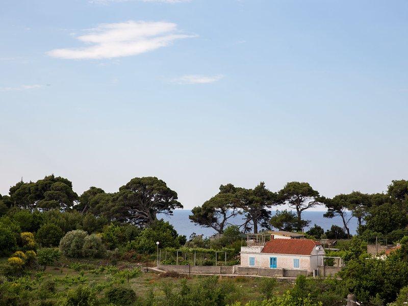 Cosy Villa in Kolocep with Garden, holiday rental in Orasac