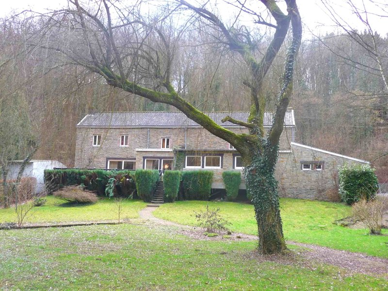 Family holiday home with beautiful garden beside the Ourthe and the RAVeL., vacation rental in Hamoir