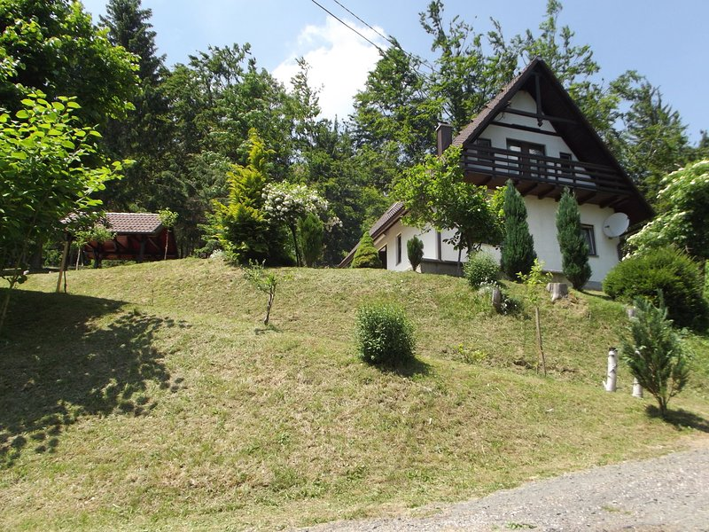 Detached house at 100m distance of the lake, surrounded by beautiful nature and, holiday rental in Lokve