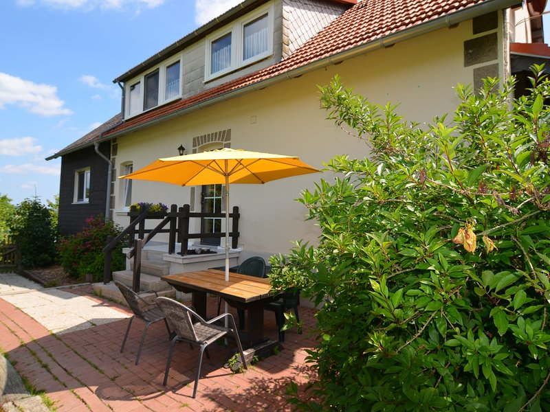Pet-friendly mansion in the Hochsauerland region with garden and terrace, holiday rental in Heringhausen