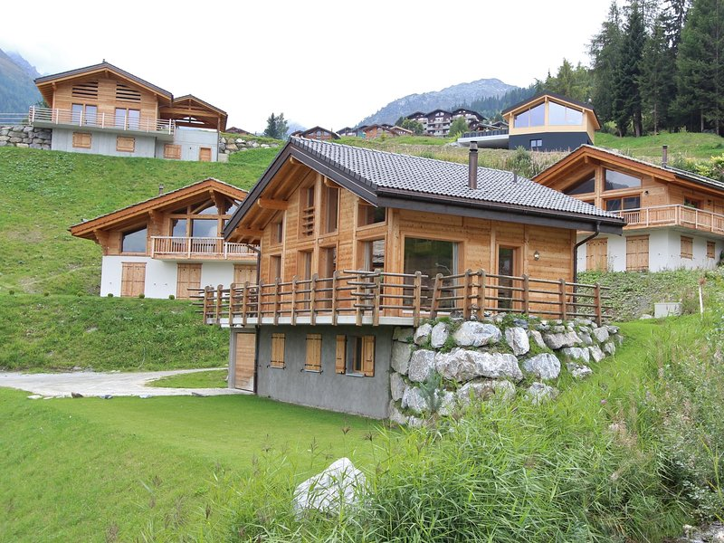 Superb new chalet, built in 2010, in the middle of the ski resort of Tzoumaz., holiday rental in Riddes