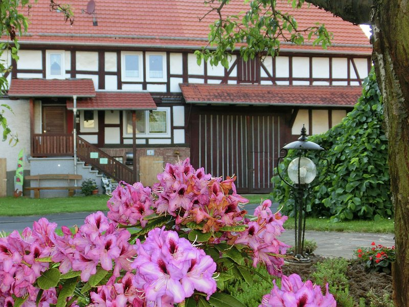 Magnificent holiday home in Obergude Hesse with private terrace, vakantiewoning in Tann