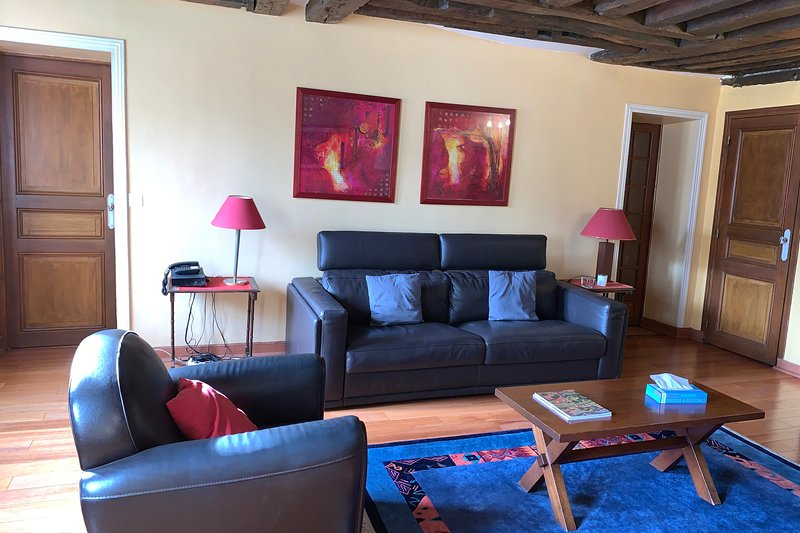 Classical and Peaceful 1 bedroom apartment in Le Marais, holiday rental in Pantin