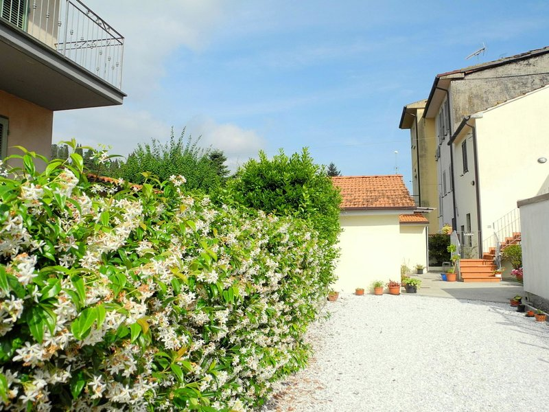 Nice holiday apartment, in a quiet area between Lucca and Camaiore, vacation rental in Montemagno