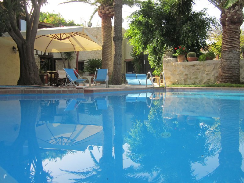 Authentic greek house with a beautiful courtyard garden and private pool, vacation rental in Giannoudion