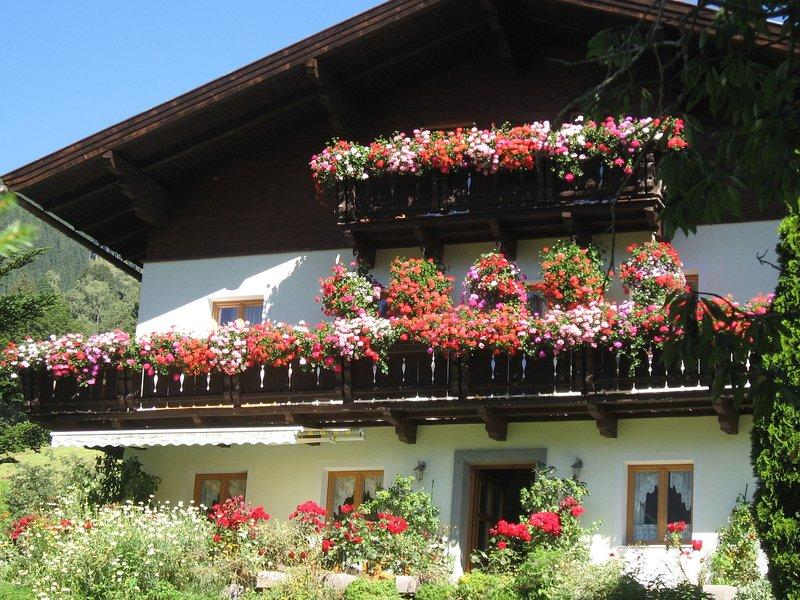 Spacious Apartment in Taxenbach with Garden, alquiler vacacional en Embach