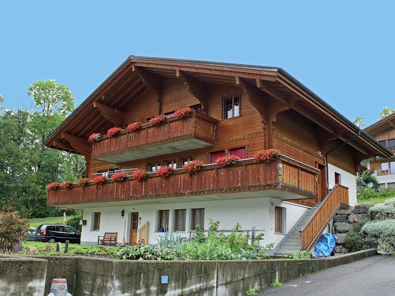 Comfortable apartment at the ground floor. Terrace with view at the Wetterhorn, vacation rental in Innertkirchen