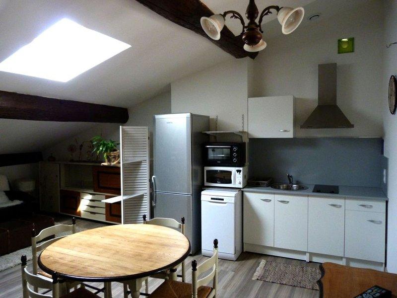 La mansarde, vacation rental in Plan-de-Baix