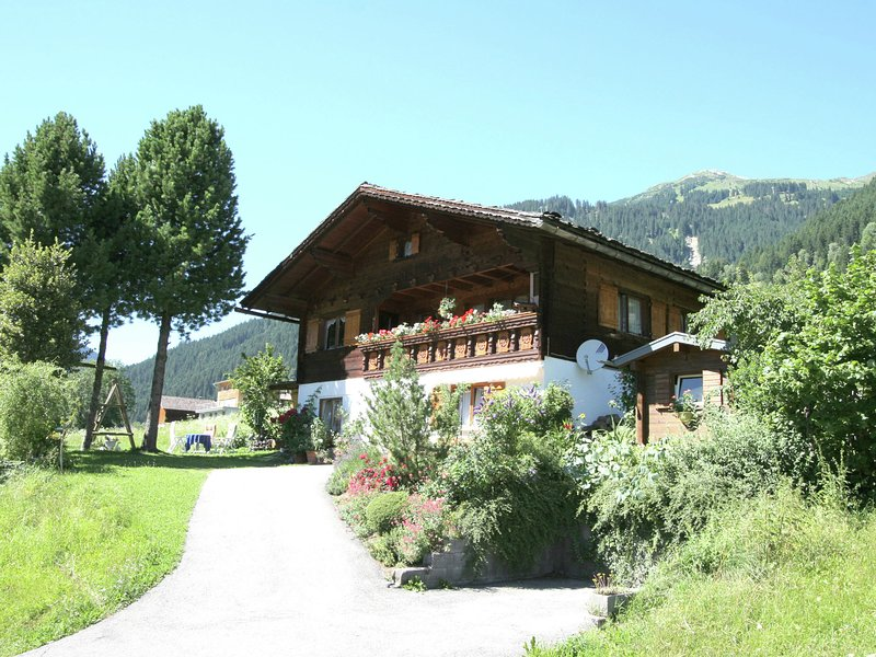 Cozy Apartment near Ski Area in Sankt Gallenkirch, holiday rental in Sankt Gallenkirch