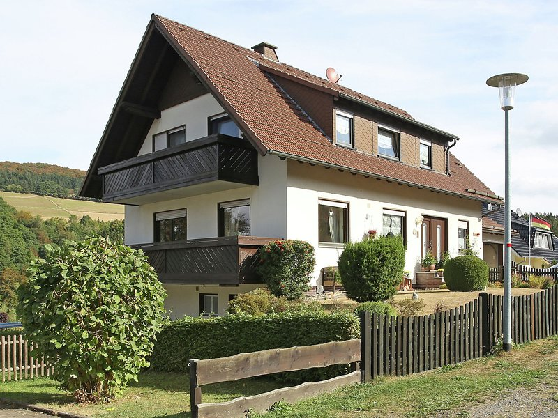 Very nicely situated apartment with terrace and view of the Diemelsee, holiday rental in Heringhausen