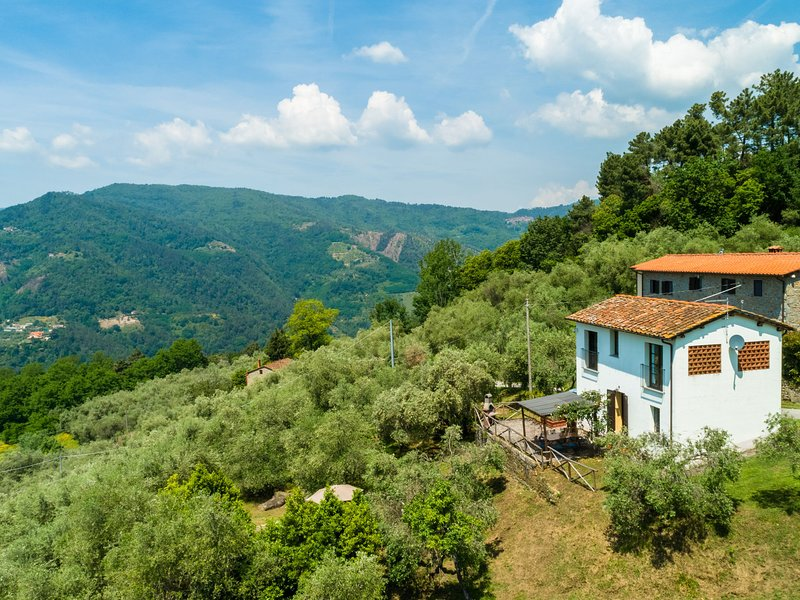 Holiday home with private swimming pool and beautiful rural view, location de vacances à Buggiano