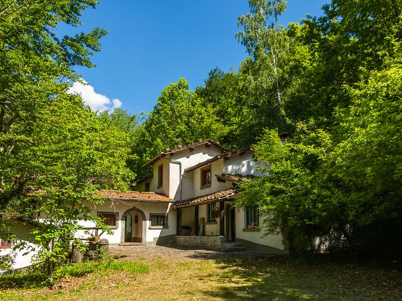 Spacious Holiday Home with Pool in Migliorini, holiday rental in Lanciole