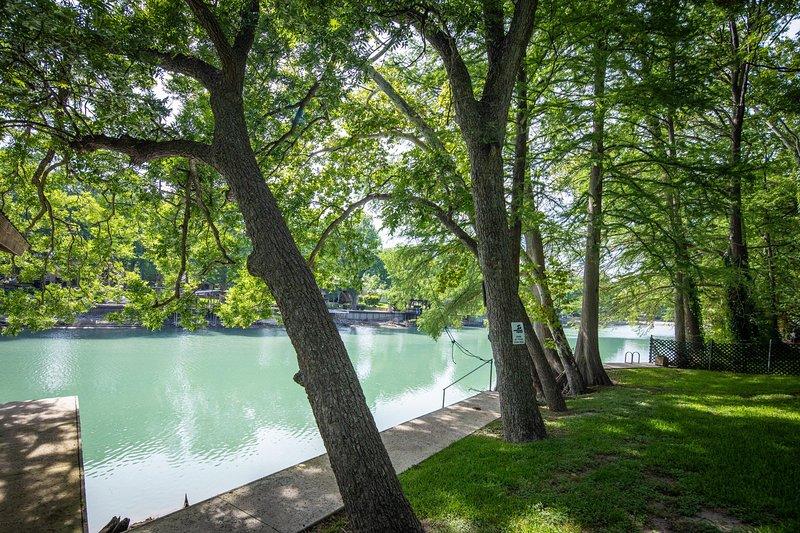 Árbol, agua, tronco de árbol, aire libre, naturaleza
