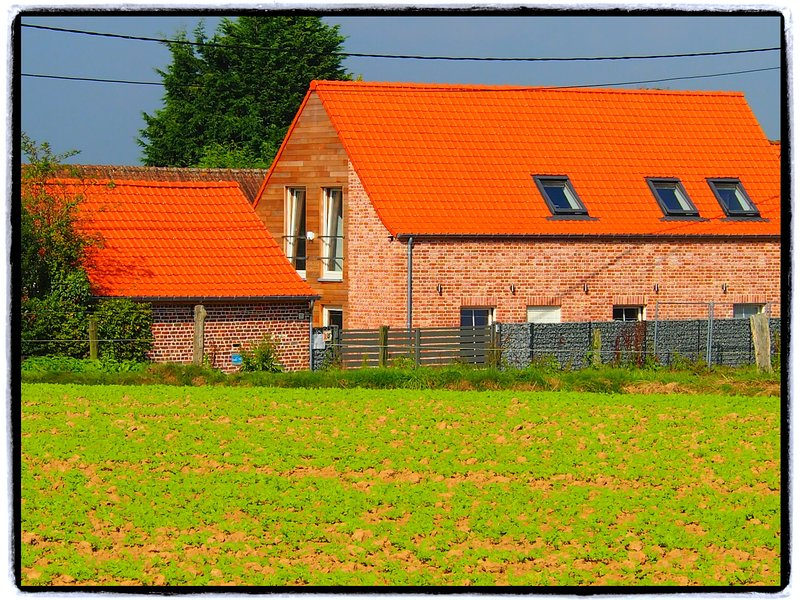 Nice and cosy cottage in the heart of the Flemish Ardennes. All-in costs., location de vacances à Kluisbergen-Ruien