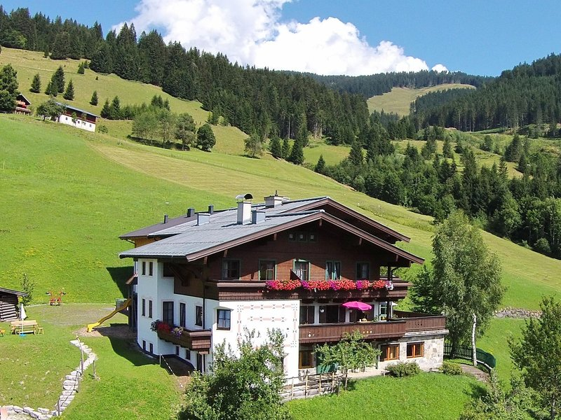 Modern Apartment near Ski Area in Maria Alm, location de vacances à Hinterthal