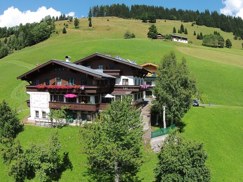 Large Apartment in Maria Alm With Terrace, location de vacances à Hinterthal