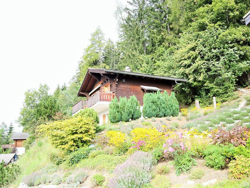 Comfortable 6-pers. chalet 2 km. from Anzere, location de vacances à Saviese